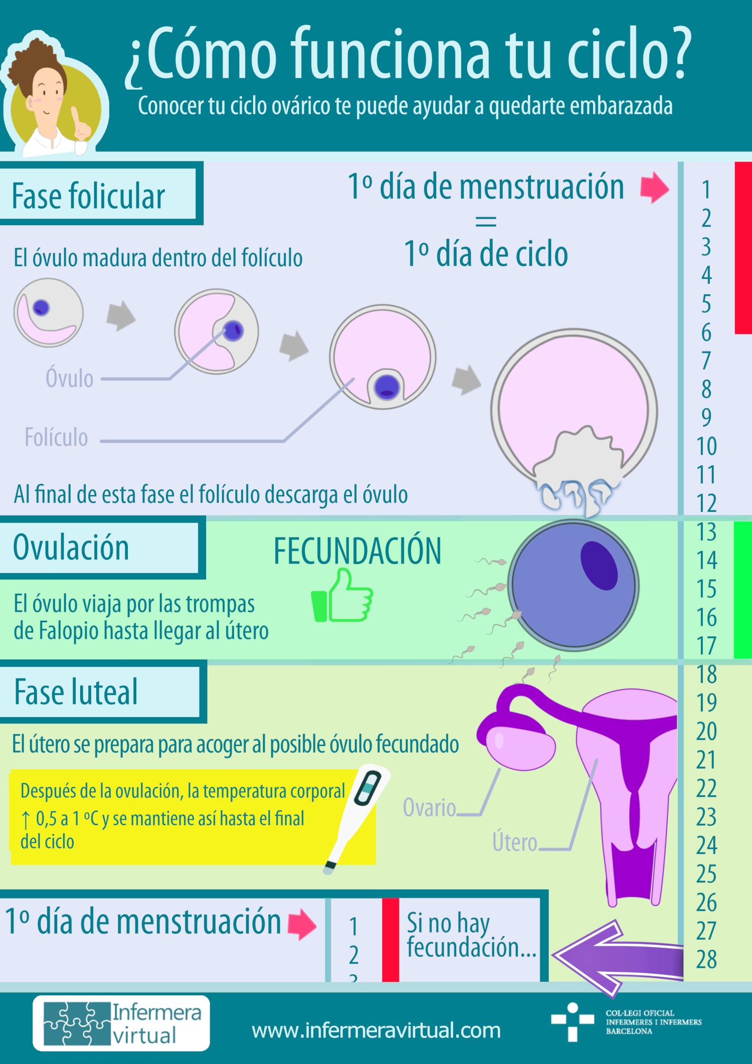 Infermeravirtual.com - Funciones del sistema, Actividades de la vi...