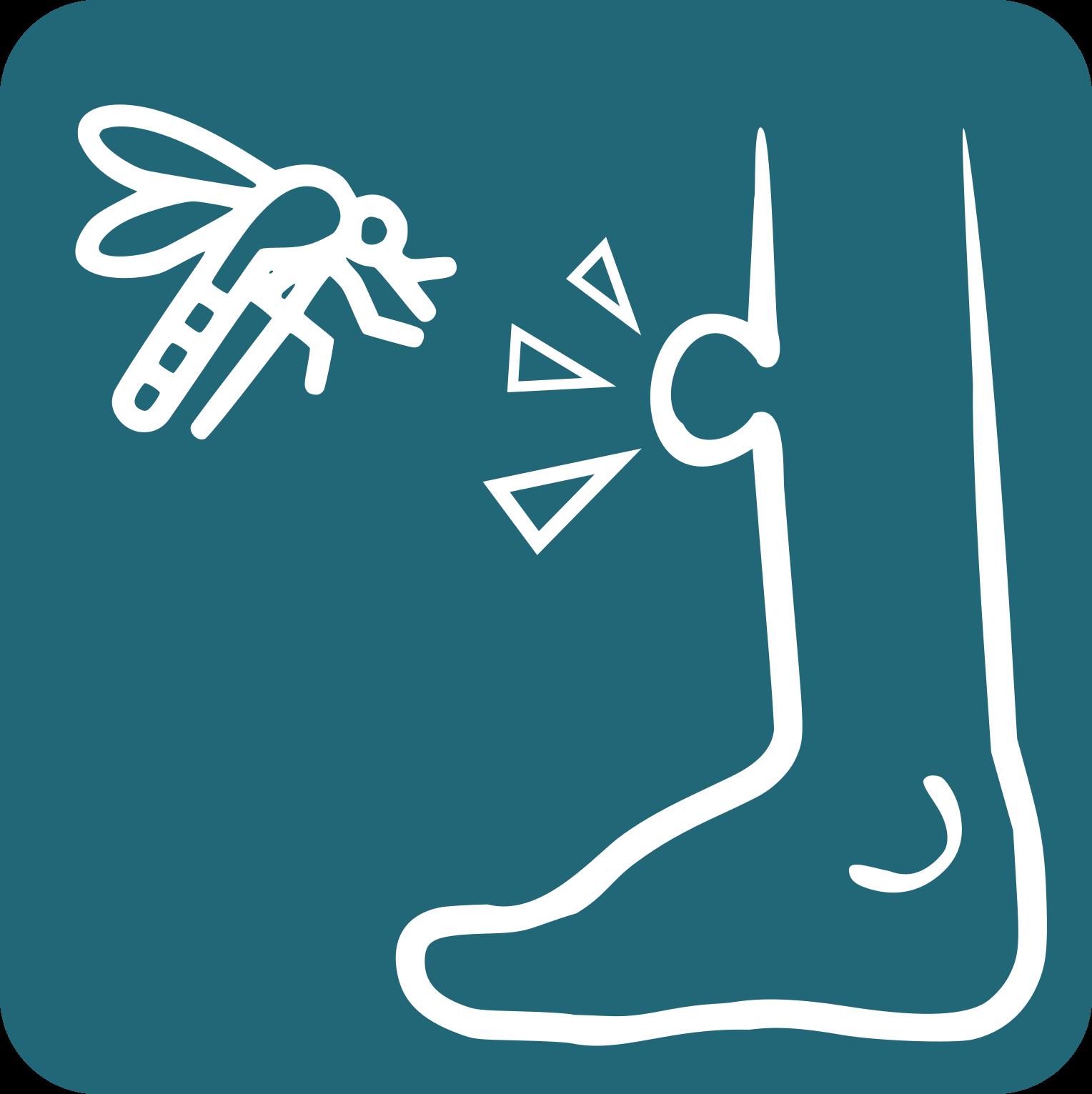 picada mosquit